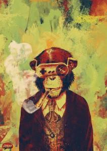 Mr Monkey Vinicius Quesada